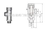 DA21F-25P 低温安全阀 低温安全阀