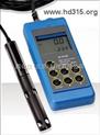便携式溶解氧测定仪(现货)   型号:H5HI9146N/04(直购现货)