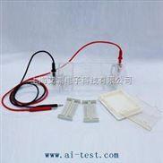 A130855-琼脂糖水平电泳仪(槽)(小号)