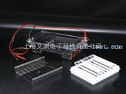 A130880-琼脂糖水平电泳仪(槽)(中号)