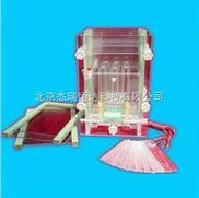 雙板夾芯式垂直電泳儀(槽)(大號)