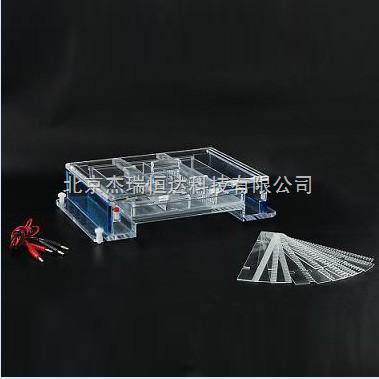 琼脂糖水平电泳仪(槽)(大号)