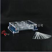 瓊脂糖水平電泳儀(槽)(大號)