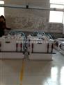 标准型二氧化氯-嘉兴二氧化氯发生器电力十足
