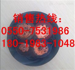YC橡套(软)电缆450/750V_天仪牌