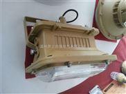 SBD1101-YQL50A防爆泛光无极灯
