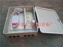 中国电信SMC48芯光纤分纤箱挂壁式48芯光缆交接箱