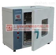 电热鼓风烘箱型号101-2A