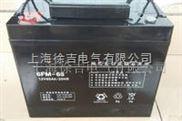 太阳能蓄电池 6-FM-65厂家