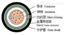 安徽天康YJV0.6/1kV交联聚乙烯绝缘电力电缆