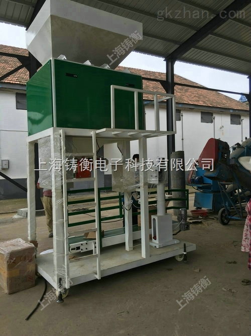 皮带输送粮食包装机