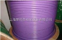 6XV1830-0EH10西門子DP電纜