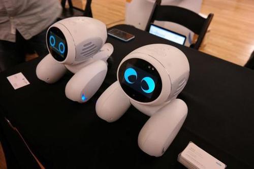 Domgy宠物机器人:可用于家居防盗的智能看门狗