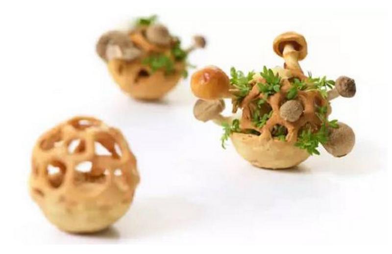 3D打印食物竟然可以長出鮮美可口的植物
