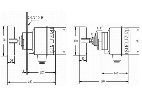 rd-30标准耐高温法兰型阻旋料位开关