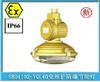 温州专业生产厂家批发SBD1102-YQL40免维护防爆节能灯